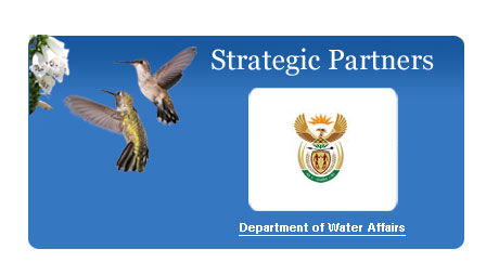 Water Affairs
