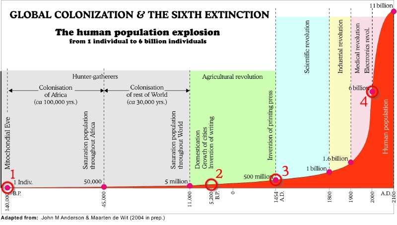 Image result for sixth extinction